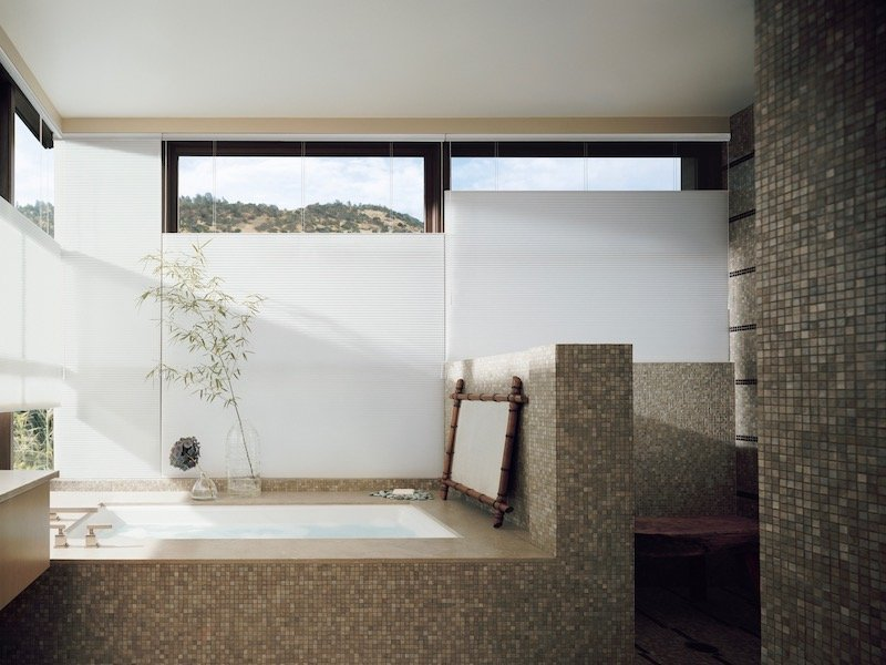 Bathroom Design With Window Treatments