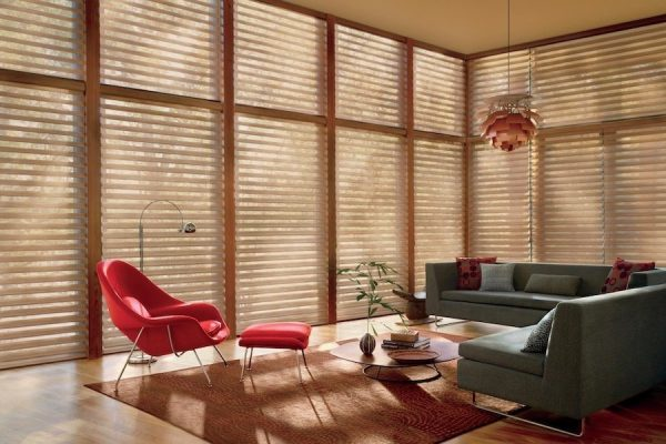 Light Filtering Window Treatments in Living Room