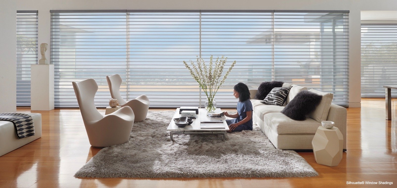 Living Room Window Treatments