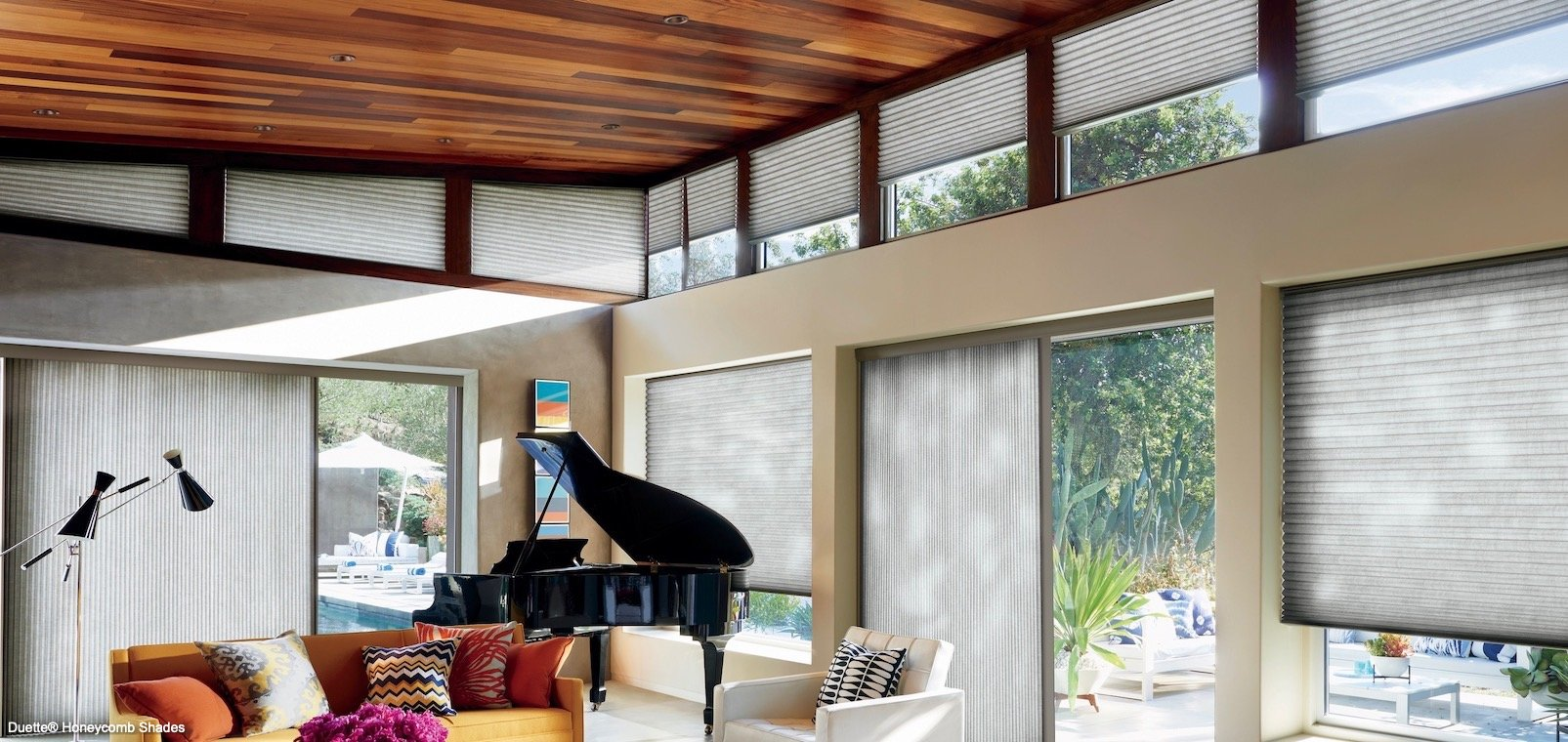 Compatible Window Treatments With Ceiling Decoration