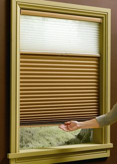 Hunter Douglas Duette Shades