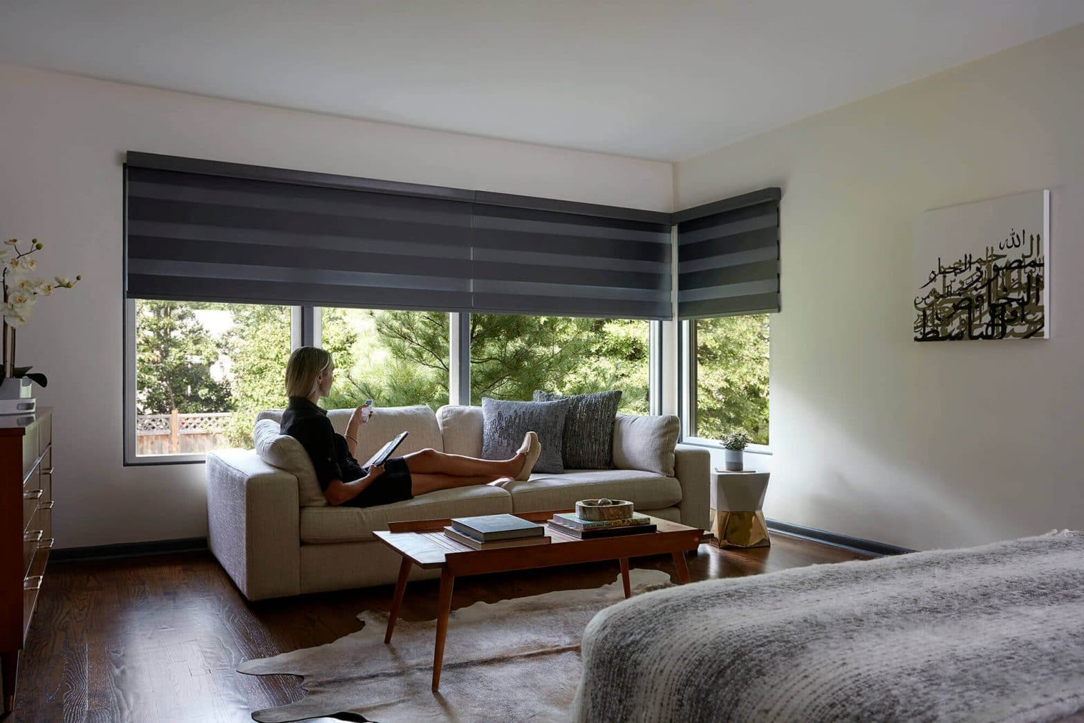 Advantages of Automatic Window Blinds and Shades